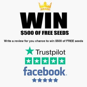 WIN $500 of free cannabis seeds