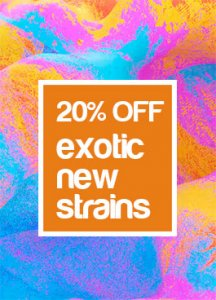 20% OFF EXOTIC NEW STRAINS