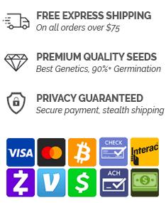 best cannabis seed bank usa